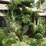 Buathong Place, Lamai