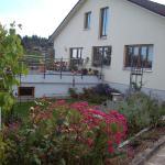 Hotel Pictures: Haus Hollerbusch, Zwiesel
