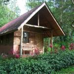 Arenal Oasis Eco Lodge & Wildlife Refuge, Fortuna