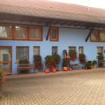 Hotel Pictures: Chambres d'Hôtes Mélodies d'Alsace, Lipsheim