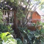 Treetops & Treats Guest House, Pretoria