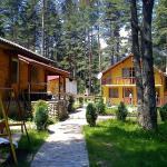 Hotellikuvia: Houses Uiut, Tsigov Chark