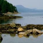 Hotel Pictures: Brown's Bay Resort, Campbell River