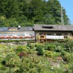 Hotel Pictures: Hotel Garni Schilli, Wolfach