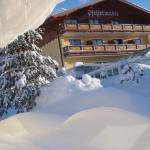 Fotografie hotelů: Hotel Pfeffermühle, Ramsau am Dachstein