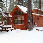 Cedar Pines Resort,  South Lake Tahoe