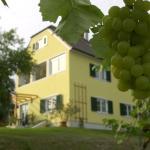Hotelbilder: Landhaus Sammt, Klöch