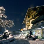 Fotografie hotelů: Ferienhotel Neuwirt, Hippach