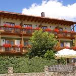 Hotel Pictures: Pension Zur Alten Schmiede, Zwiesel