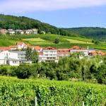 Hotel Pictures: Hotel Südpfalz-Terrassen, Gleiszellen-Gleishorbach