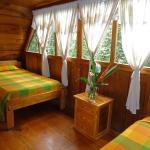 Hotel Pictures: Cabañas Armonía y Jardín de Orquídeas, Mindo