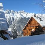 Hotel Pictures: Chalet des Neiges Oz en Oisans, Oz
