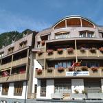 Hotel Pictures: Hotel Viktoria Eden, Adelboden