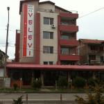 Hotel Pictures: Velevi Guest House, Burgas City