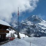Hotel Pictures: Pension Sonnenberg, Mürren
