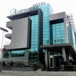 Hotel Aleksandar, Novi Sad