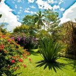 Hotel Pictures: Tacacori EcoLodge, Alajuela