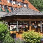 Hotellikuvia: Landhotel Wachau, Emmersdorf an der Donau