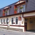 Vila Veche, Haţeg