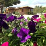 Tortuga Casa Vacanze, Scarlino