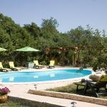 Hotel Pictures: Hostellerie le Vieux Chêne, Causse-de-la-Selle