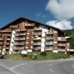 Hotel Pictures: Studio Saphir, Anzère