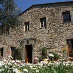 Il Casello Country House B&B, Greve in Chianti