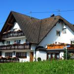 Hotel Pictures: Pension Richebächli, Elzach
