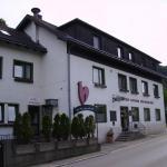 Zdjęcia hotelu: Gasthaus Roter Hahn, Höflein an der Donau