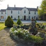 Walcot Bed and Breakfast, Birr