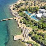 Ora Holiday Village, Torba