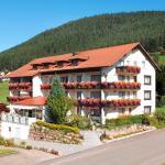 Hotel Birkenhof,  Baiersbronn
