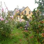 Seaside B&B, Ballinskelligs
