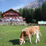 Fotografie hotelů: Gasthof Edelbrunn, Ramsau am Dachstein