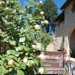 Agriturismo Sulle Orme Di Dante, San Gimignano
