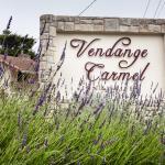 The Vendange Carmel Inn & Suites, Carmel