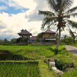 Dukuh Village Homestay & Villas, Tegalalang