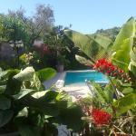 Casa Seralba B&B, Ischia