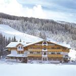 酒店图片: Hotel Alpenblick, 费尔兹姆斯