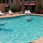 Hotellikuvia: Noosa Sound Resort Noosaville, Noosaville