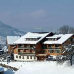 Фотографии отеля: Genusshotel Alpenblick, Лингенау