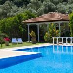 Villa Dimitris Apartments & Studios,  Lefkada Town