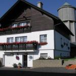 Hotel Pictures: Pension Pugner, Vysoké nad Jizerou