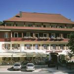 Hotel Pictures: Hotel Löwen, Todtmoos