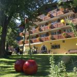 Hotel Pictures: Alpenhotel + Restaurant Sardona, Bad Ragaz