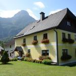 Ferienhaus Gamsjäger, Obertraun