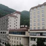 Hotel New Ohruri,  Nikko