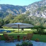 Hotellikuvia: Haus Bergheim, Bad Goisern