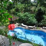 Sari Wangi Cottage,  Ubud