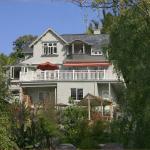Joya Garden & Villa Studios, Nelson